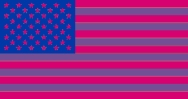 US flag in bi colours