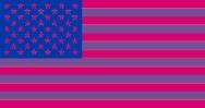 US flag in bi colours
